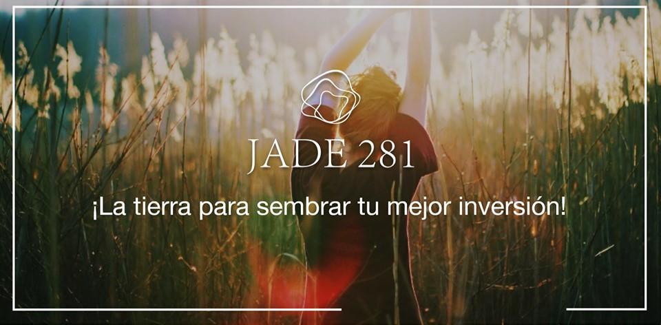 JADE 281